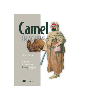 Camel in Action, 2nd Edition